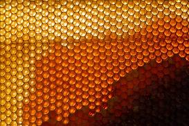 yellow-honeycomb-texture (1).jpg