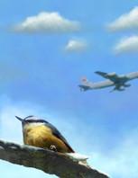 Sitting Bird/Flyby