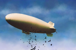 Blimp and Bird Attack