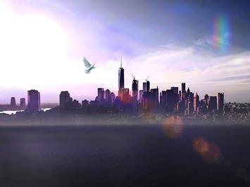 View №17,Dove Over Manhattan