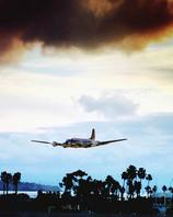 Propeller Plane Over Palm Trees