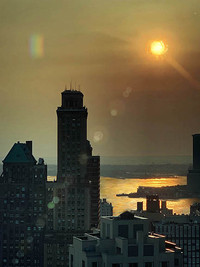 View №8, Gold Reflect/New York Harbor