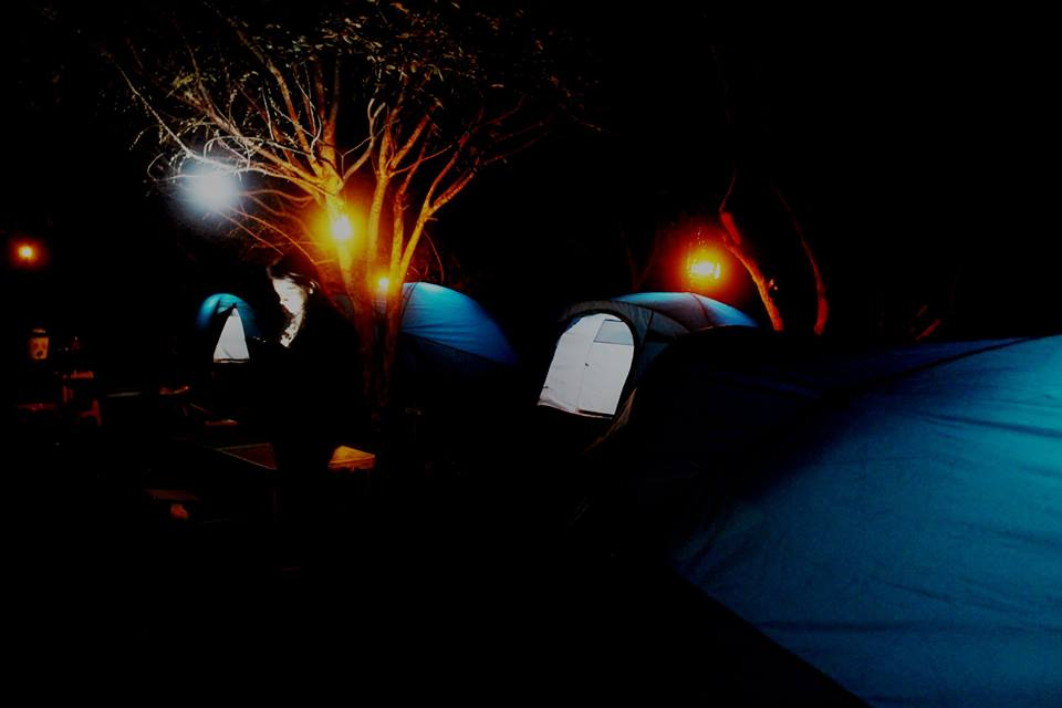 night _ campsite