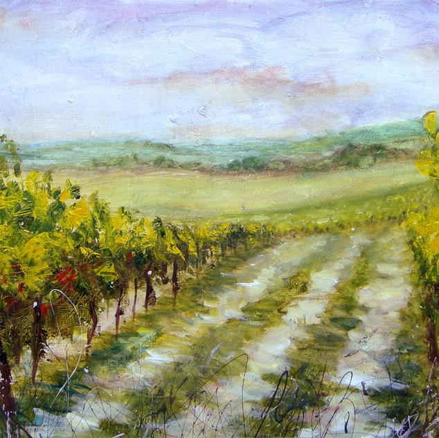 Vineyards (sold)