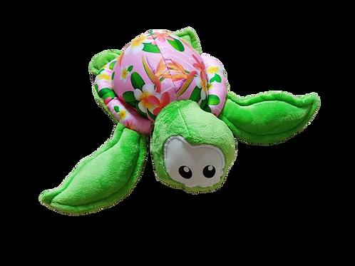 Teani la petite tortue