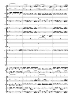Una pagina della Prima Sinfonia