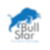 Bull-Star---logotype png.png