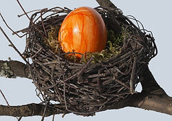 Orange marbeled egg in nest