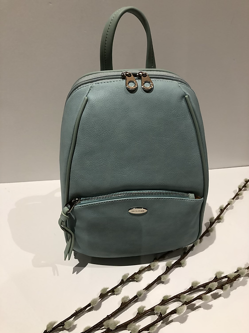Pale Green/Blue  Backpack