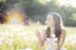 dandelions-609253_640_edited.jpg