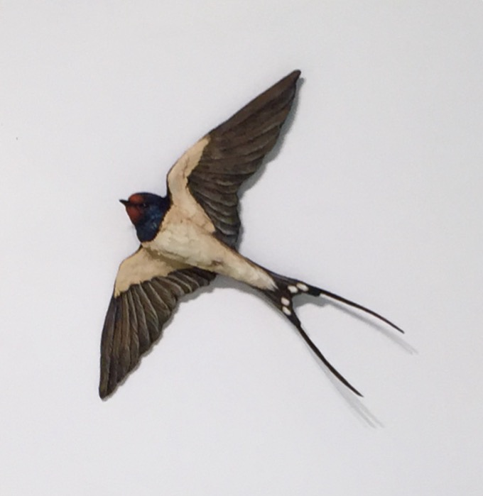 Bird Sculpture - Swallow