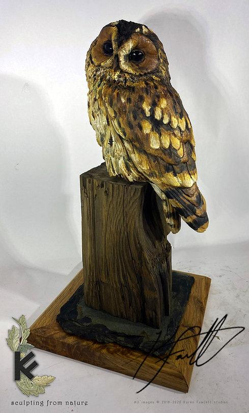 Tawny owl nice base 3.jpg