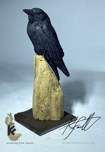 Mini Raven