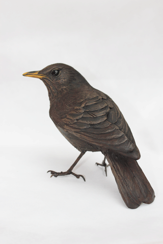 Bird Sculpture - Thrush