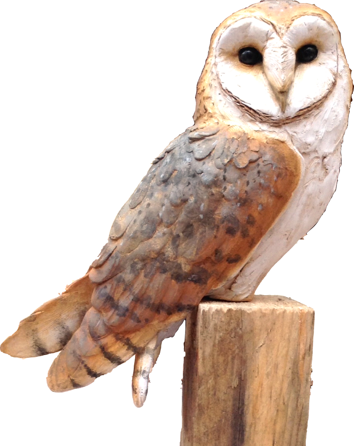 Bird Sculpture - Barn Owl