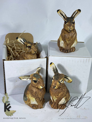 Mini Hare