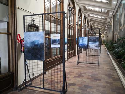 Exposición en Medina del Campo