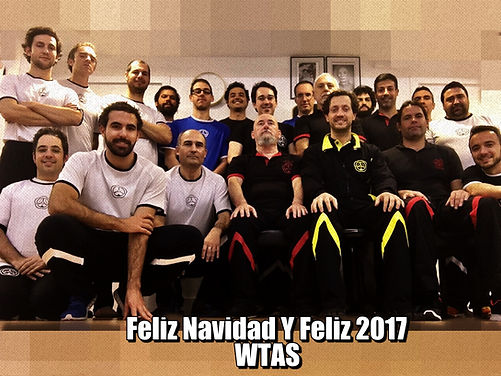 Feliz Navidad y Año Nuevo 2017 WTAS