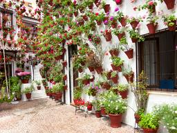 Decora tu patio andaluz