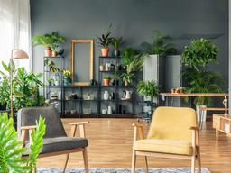 Tendencias de decoración 'millennials' para tu primera vivienda