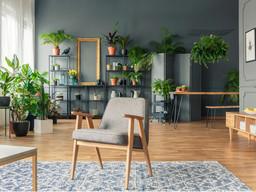 Decorar con plantas una casa de estilo nórdico