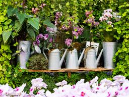 6 Tendencias en decoración sostenible para tu casa