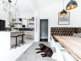 Consejos para mantener tu casa limpia con un perro