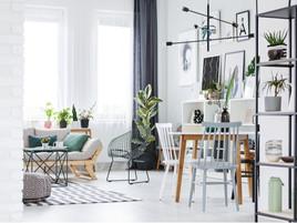 Las ventajas de usar plantas decorativas en tu hogar