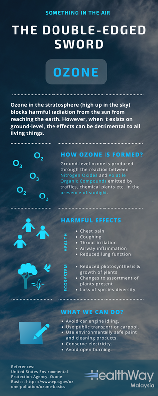 Something In The Air: Ozone