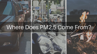 Case Study in Peninsular Malaysia - Where Does PM2.5 Come From?
