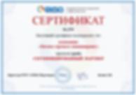 Сертификат Бизнес-процесс инжиниринг (BPEngine) от ELMA
