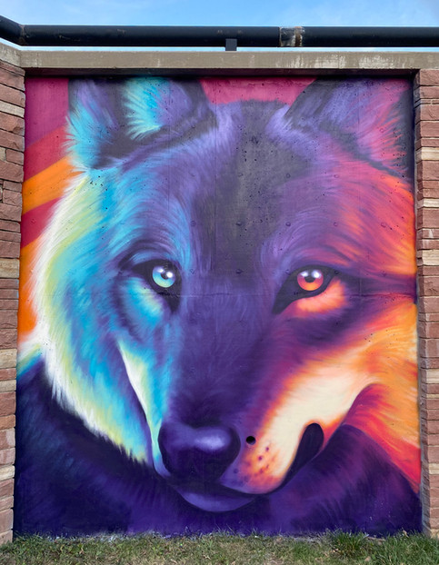 COVID Canids Detail