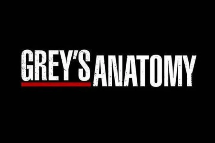 Grey's Anatomy serie poster oficial
