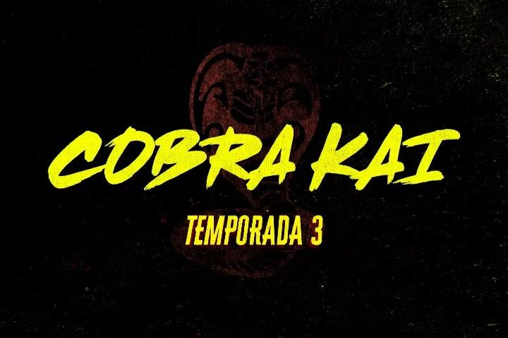 Cobra Kai serie poster temporada 3