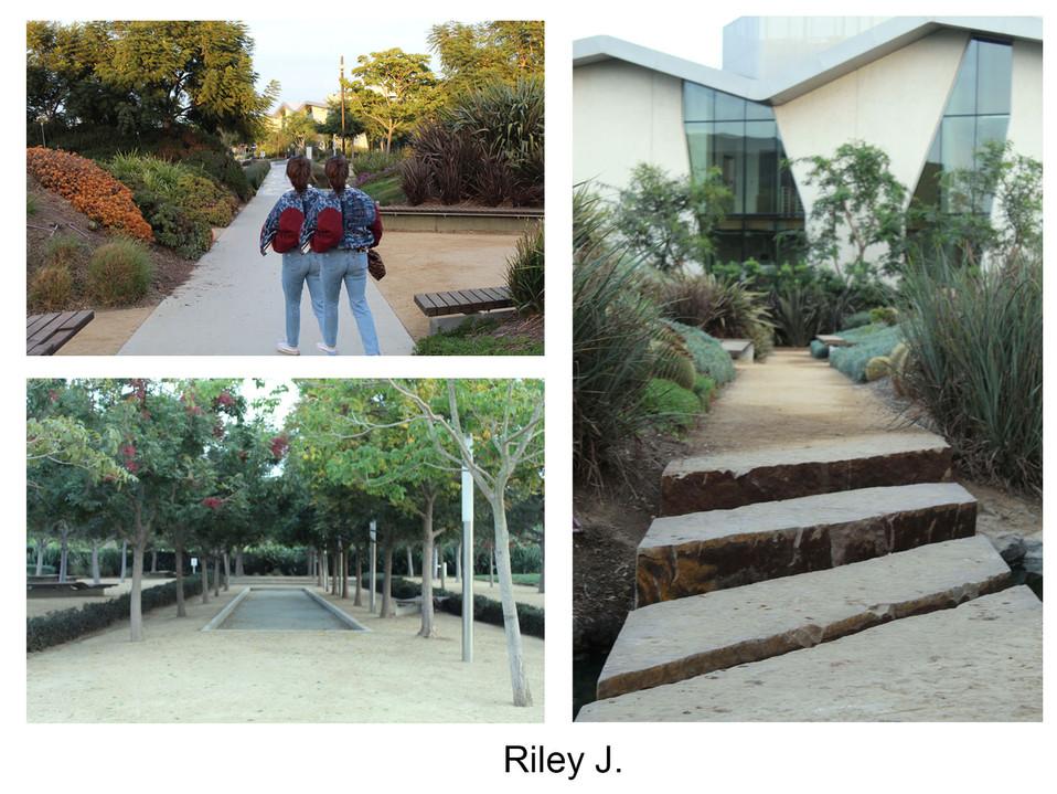 Riley J.