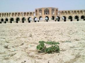 محیط زیست ایران نفسهای آخر را میکشد