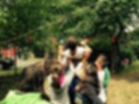 foto 12+