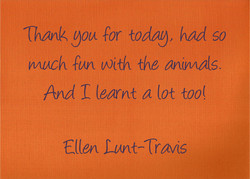 ‎Ellen Lunt-Travis - Facebook
