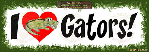 'I heart Gators!' Jumbo Sticker