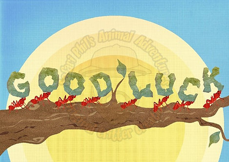 Good Luck Card - Leaf Cutter Ants