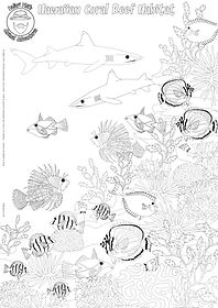 hawaiian coral reef detailed colouring s