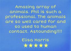 CP-Elisa Harris - fb