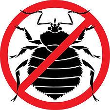 No bedbugs.jpg