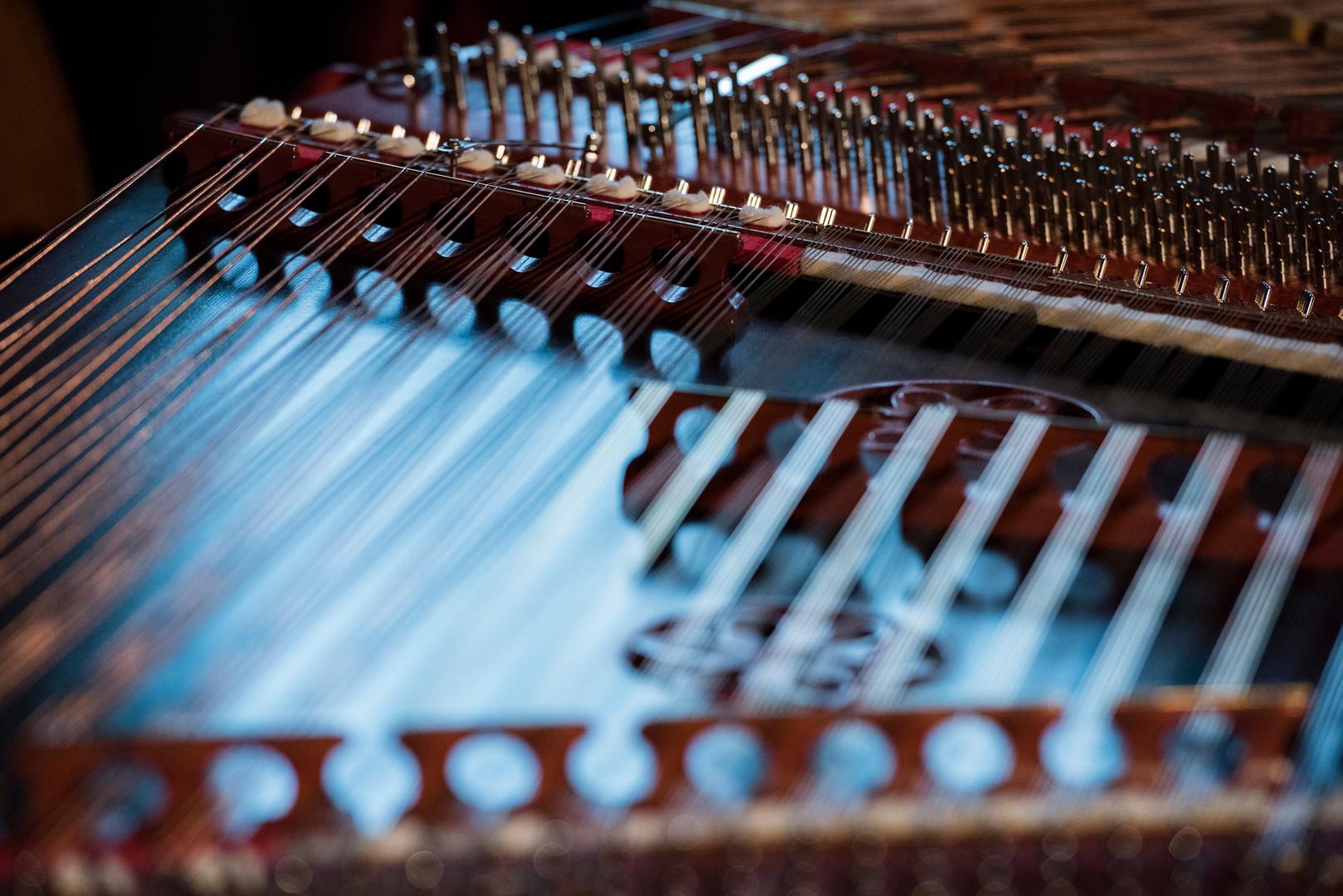 40 chörige Konzerthackbretter