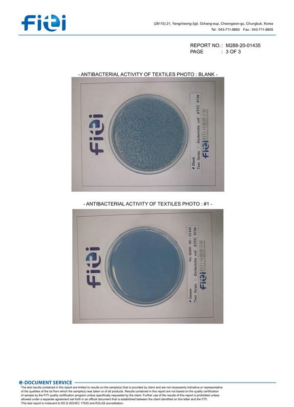 Escherichia coli-3.jpg