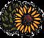 IE_logofromwebpage_sml72_edited.png