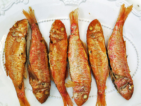 Pan fried Red Mullet
