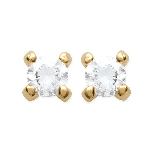Boucles d'oreilles - 4 Griffes
