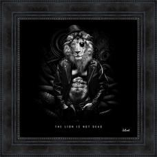 THE LION IS NOT DEAD 52.5X52.5CM.png