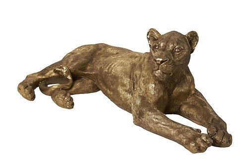 LIONNE OR XXL